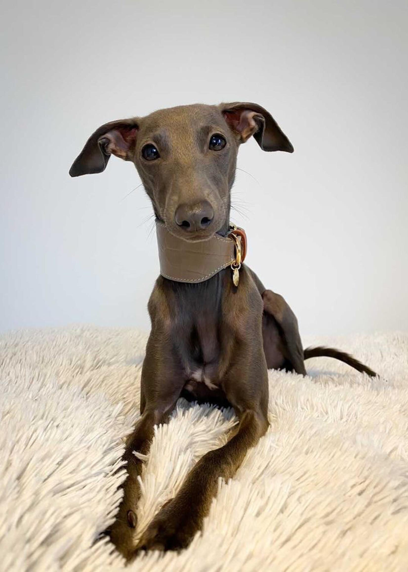 Merry Marie Greyhound halsband Taupe