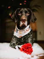 Merry Marie Love bandana