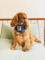 Merry Marie Oversized lap dog bandana
