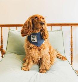 Oversized lap dog bandana