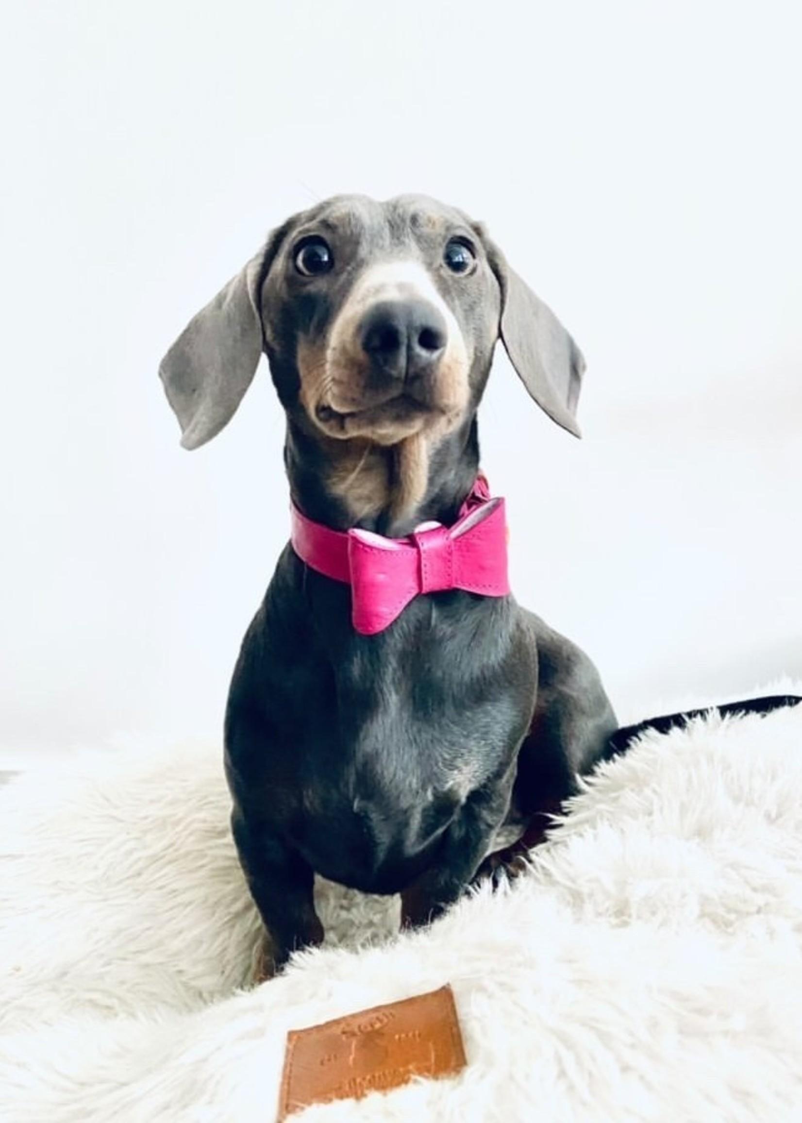 Merry Marie Roze halsband  met strik - OSTRICH