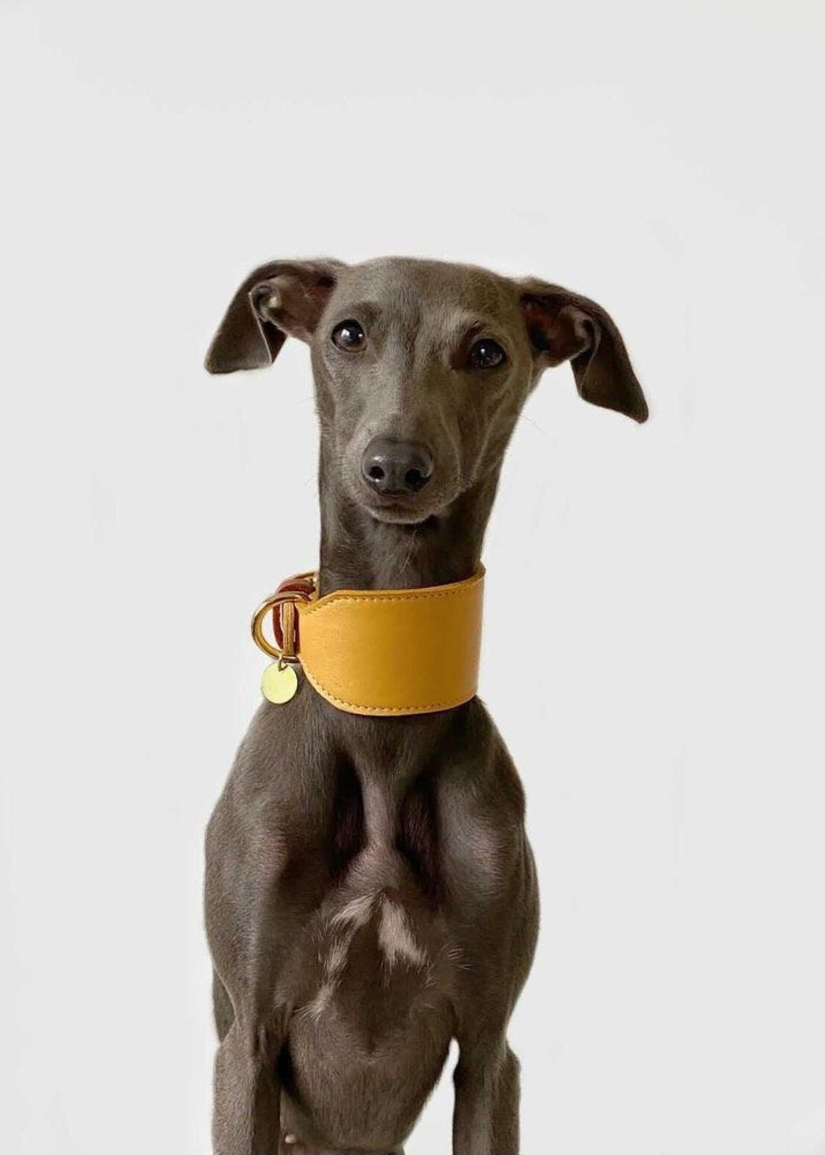 Merry Marie Greyhound halsband Mango - Mint - Lilac