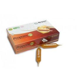 Eğriçayır Eğriçayır Propolis Royal Jelly & Ginseng Ampullen(20 Stuks)