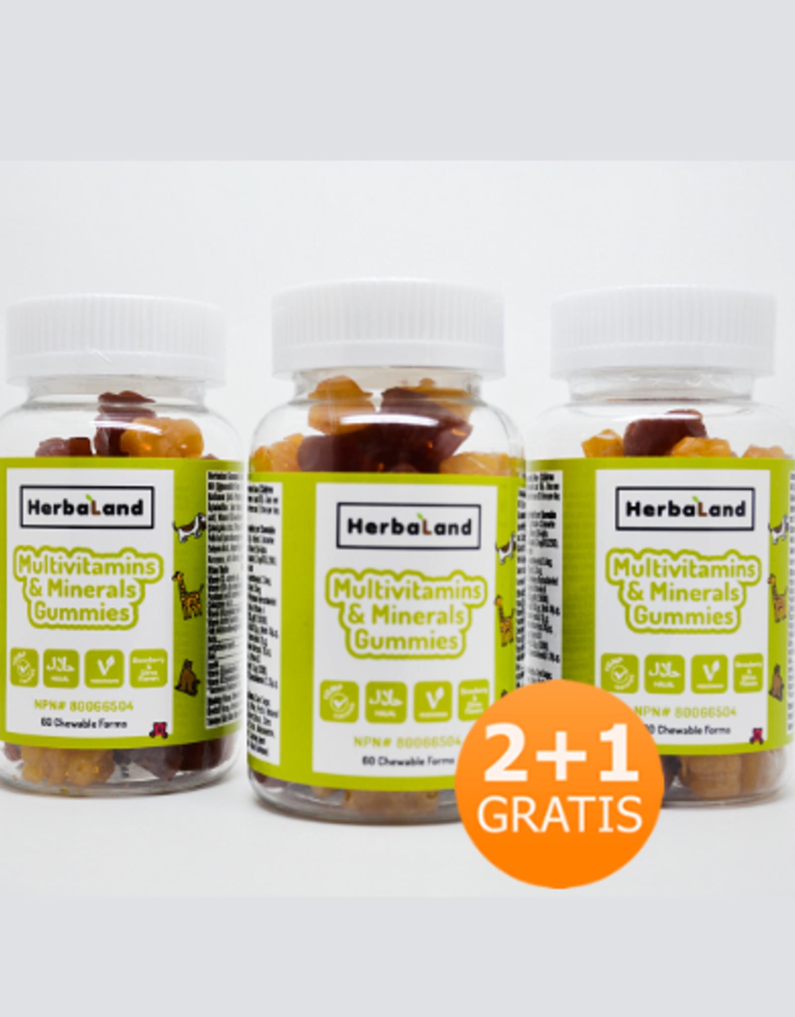 Herbaland Herbaland Gummy Vegan Multivitaminen & Mineralen 2+1 Gratis