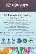 Eğriçayır Eğriçayır Bio Propolis Kids 1000 mg 20 Ampul