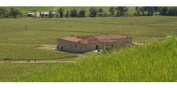 Trinoro - Tenuta di Trinoro / Toskana, Sarteano