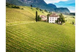 Alois Lageder / Südtirol, Margreid