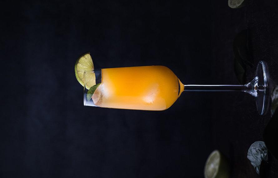 Mimosa Rossa