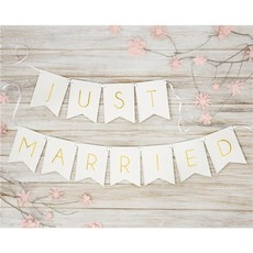 Partydeco Witte 'Just Married' - Slinger