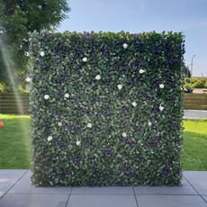 Verhuur - Greenwall backdrop