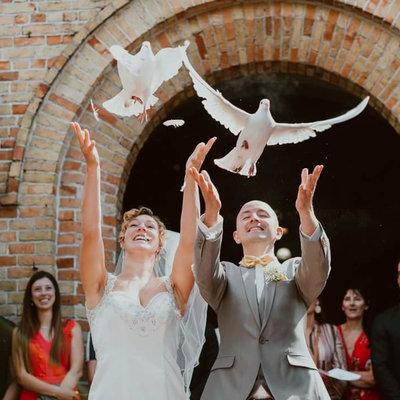 Verhuur - Witte duiven in bruidsmand