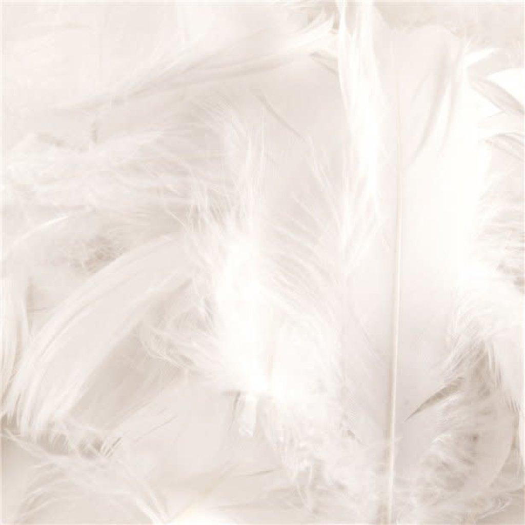 Witte veren (50gr)