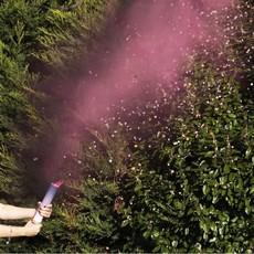 Ginger Ray Gender Reveal - Confetti & Rookbom (roze)