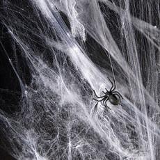 Halloween - Spinnenweb (60gr)