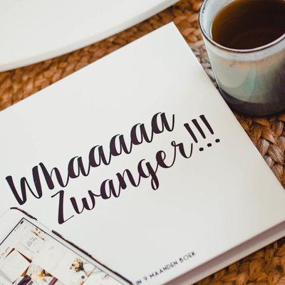 Bonjour to you! Whaaaaa Zwanger!!!