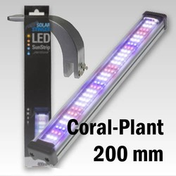 Opruiming En Zonder Garantie Econlux Led 200mm Coral-Plant + 1x Bridgeholder