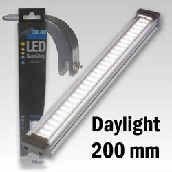 Opruiming En Zonder Garantie Econlux Led 200mm Daylight + 1x Bridgeholder