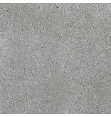 Schellevis Oud Hollandse tegel Grijs 60x60x7 cm