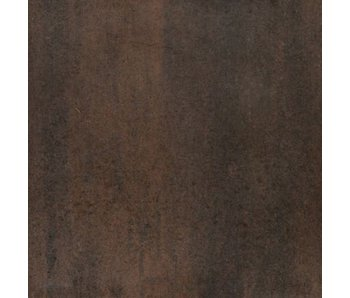 TuinVisie Tremico Brons 60x30x6 cm