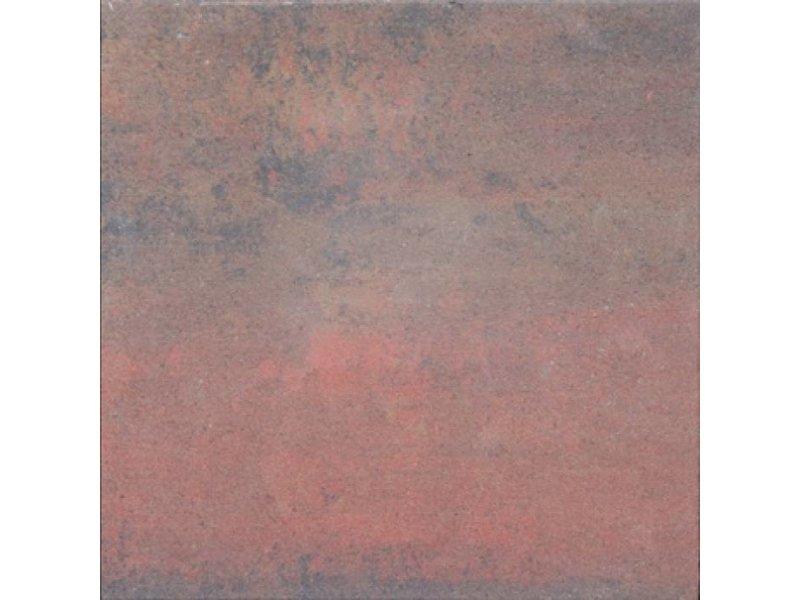 TuinVisie Tremico Oud Bont 60x30x6 cm