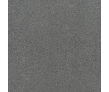 TuinVisie Furora Vlak premium Zilver 60x60x4 cm