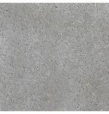 Schellevis Oud Hollandse tegel Grijs 50x50x5 cm