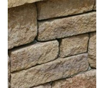 TuinVisie Blackburn Walling Yellow 20x10x6,5 cm