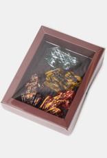 Florentina.Chocolates Harry Potter frog box of 4