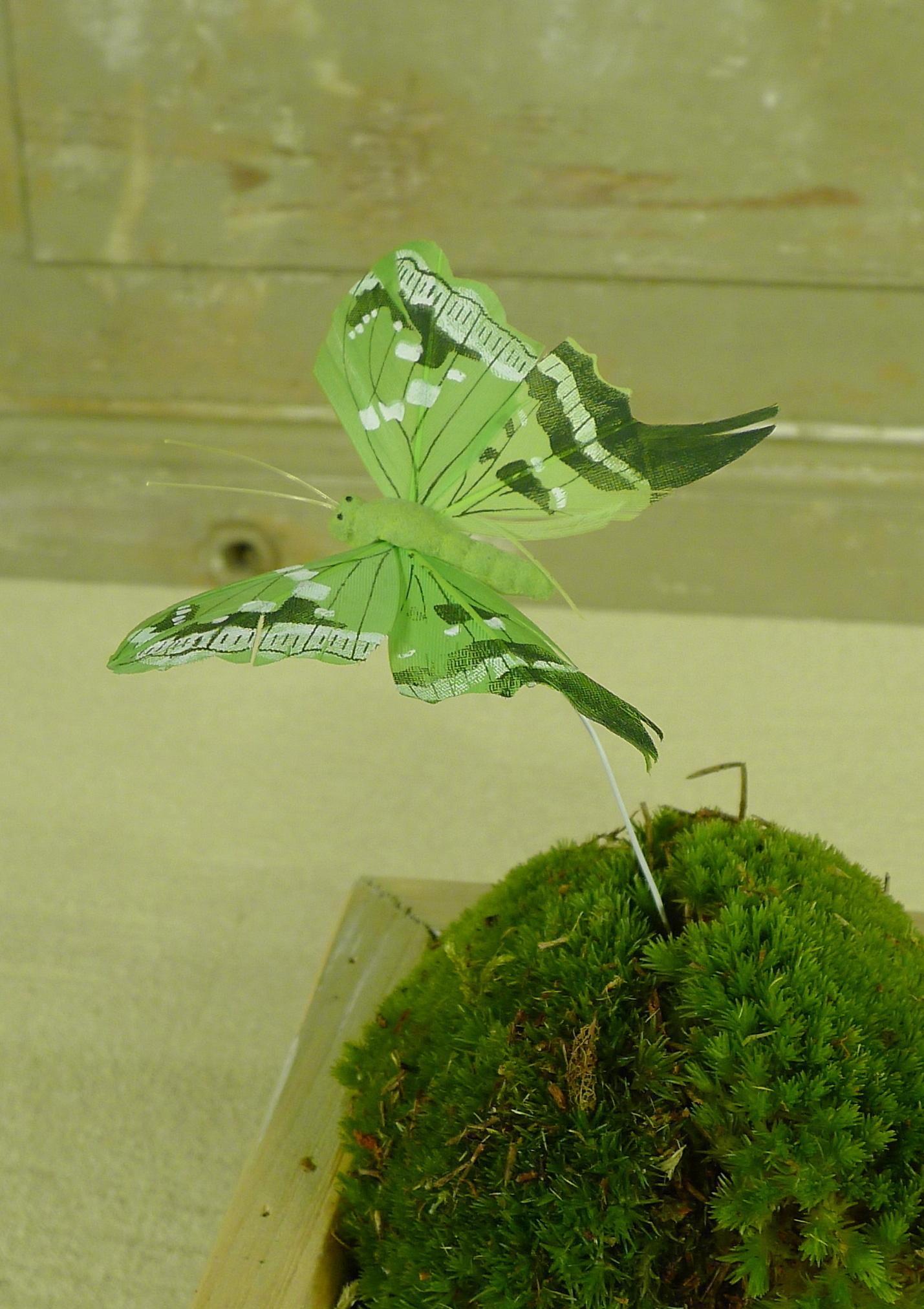 flor dec fabric butterfly 7.5 green-9