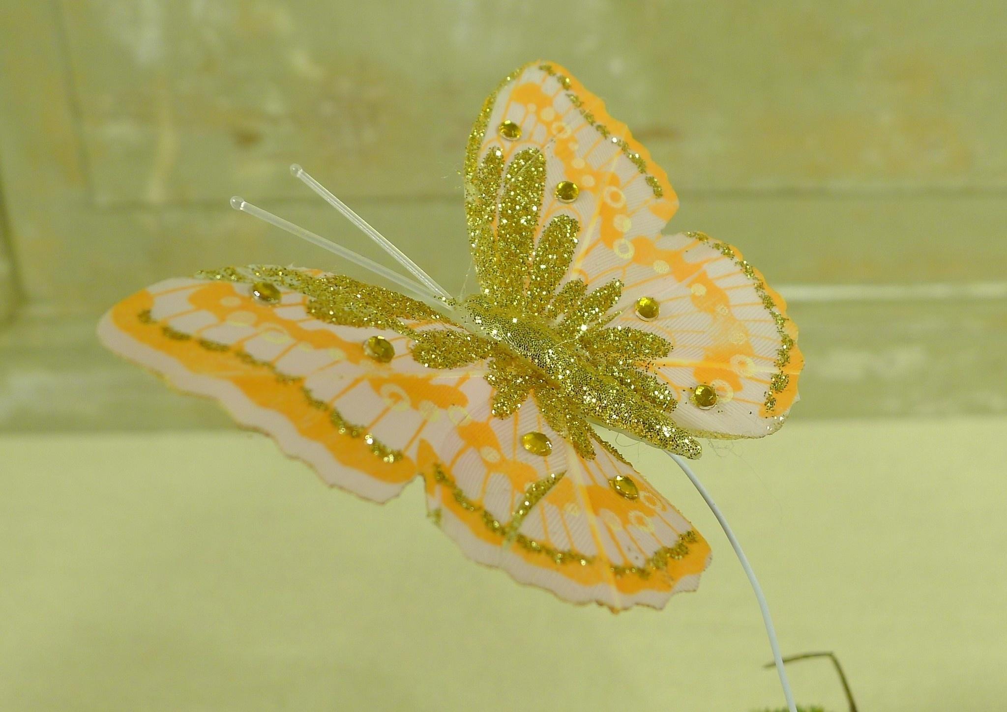 flor dec fabric butterfly 7.5 orange-6