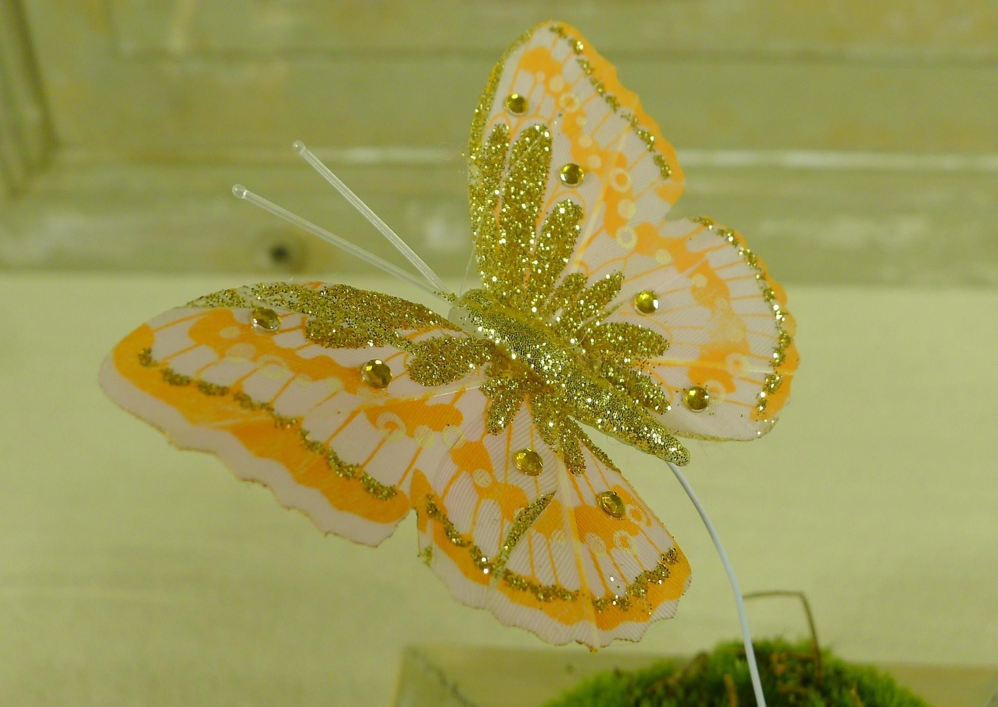 flor dec fabric butterfly 7.5 orange-7