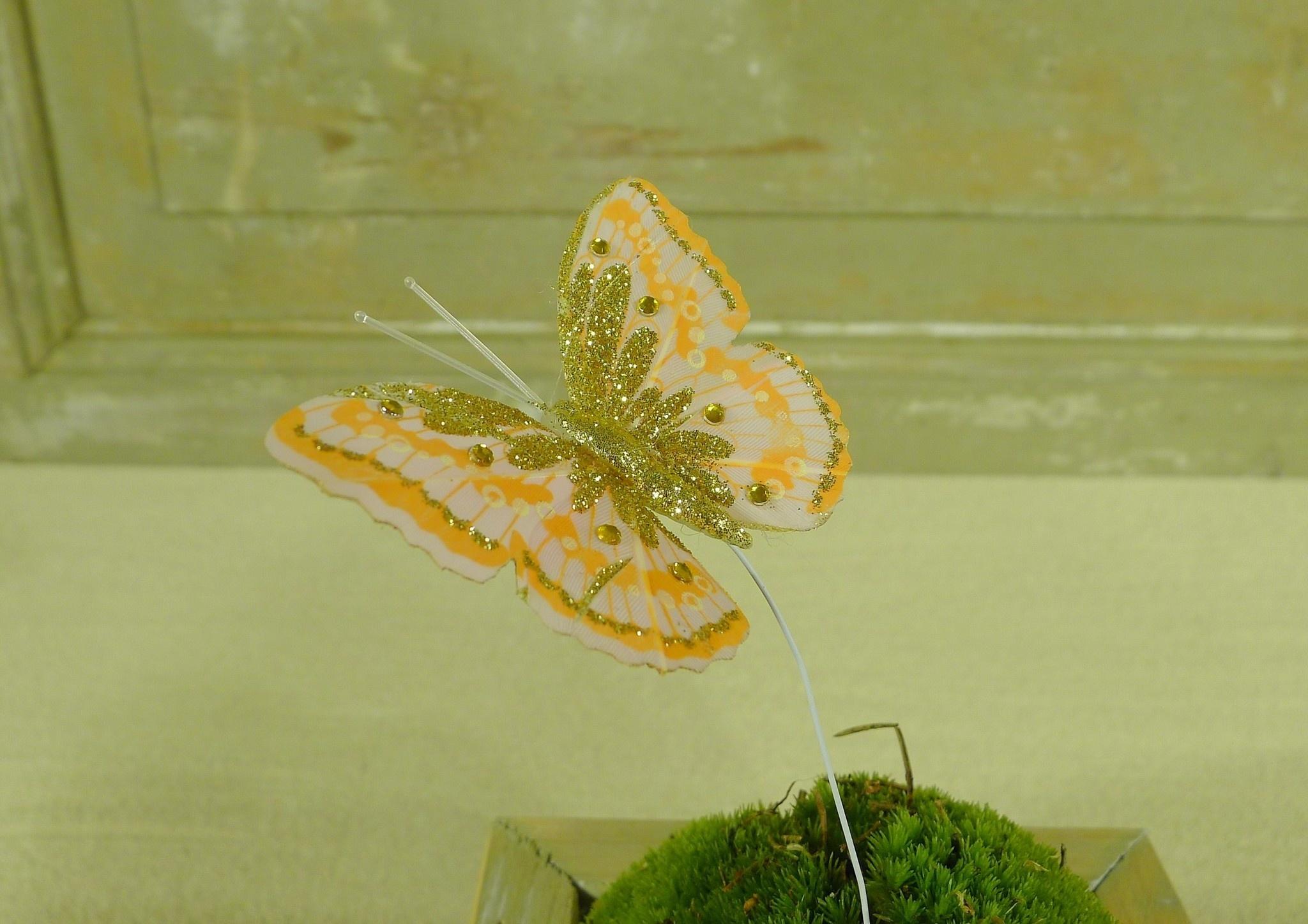 flor dec fabric butterfly 7.5 orange-8