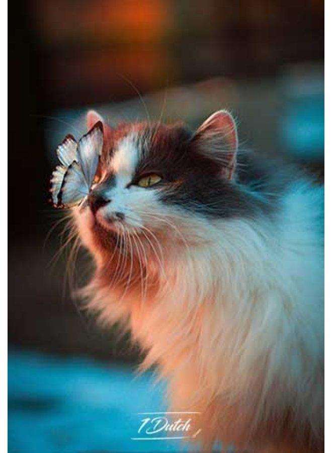 Butterfly on cat