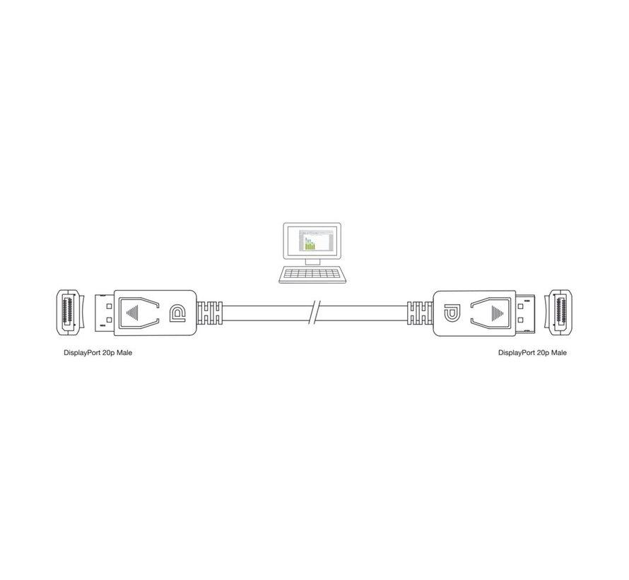 Ewent EW9840 DisplayPort kabel 2 m Zwart