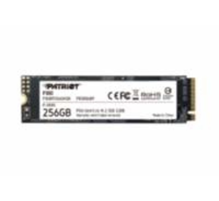 SSD Burst 256GB M.2 NVME