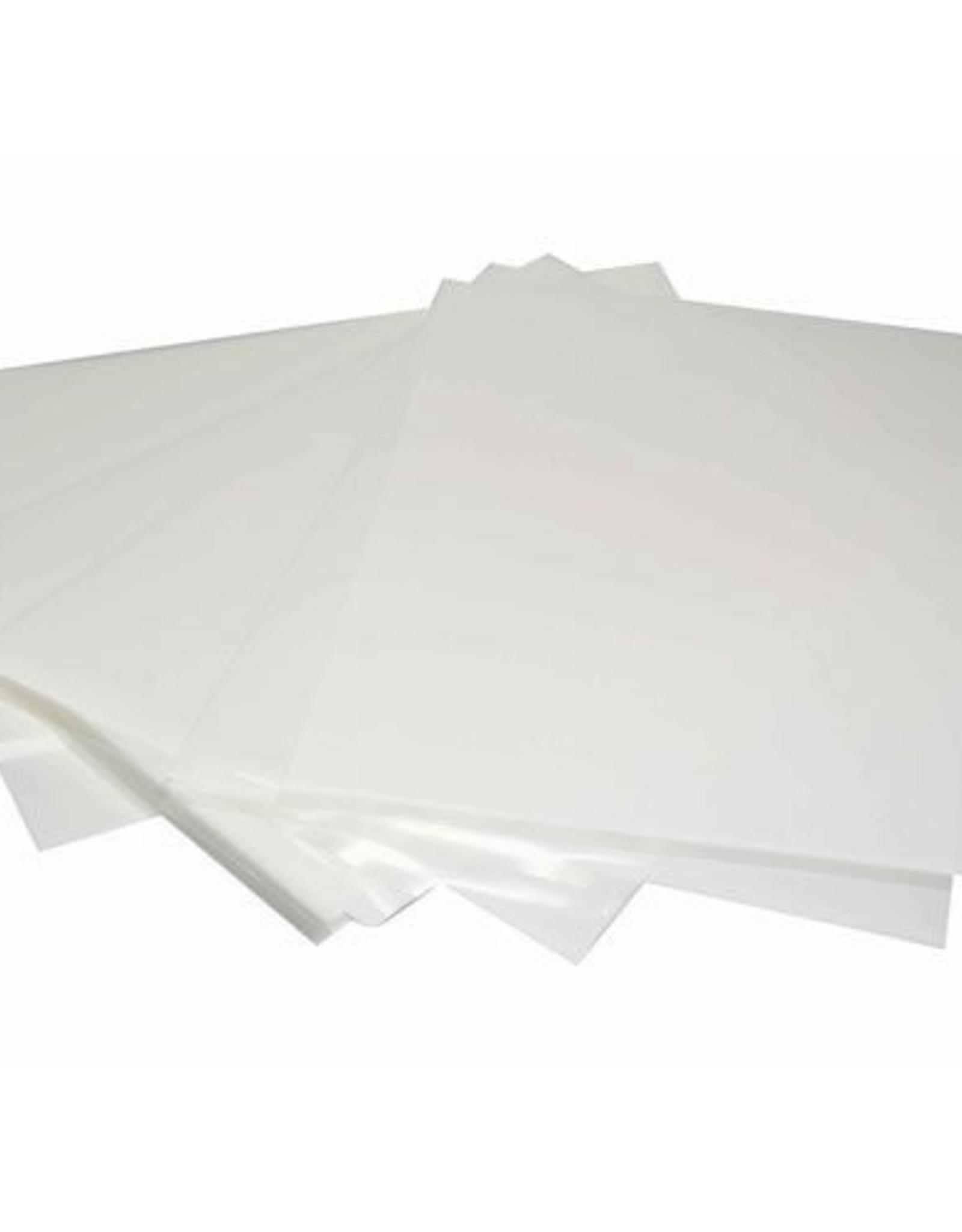 Eetbare print Frosty sheet/5 blanco