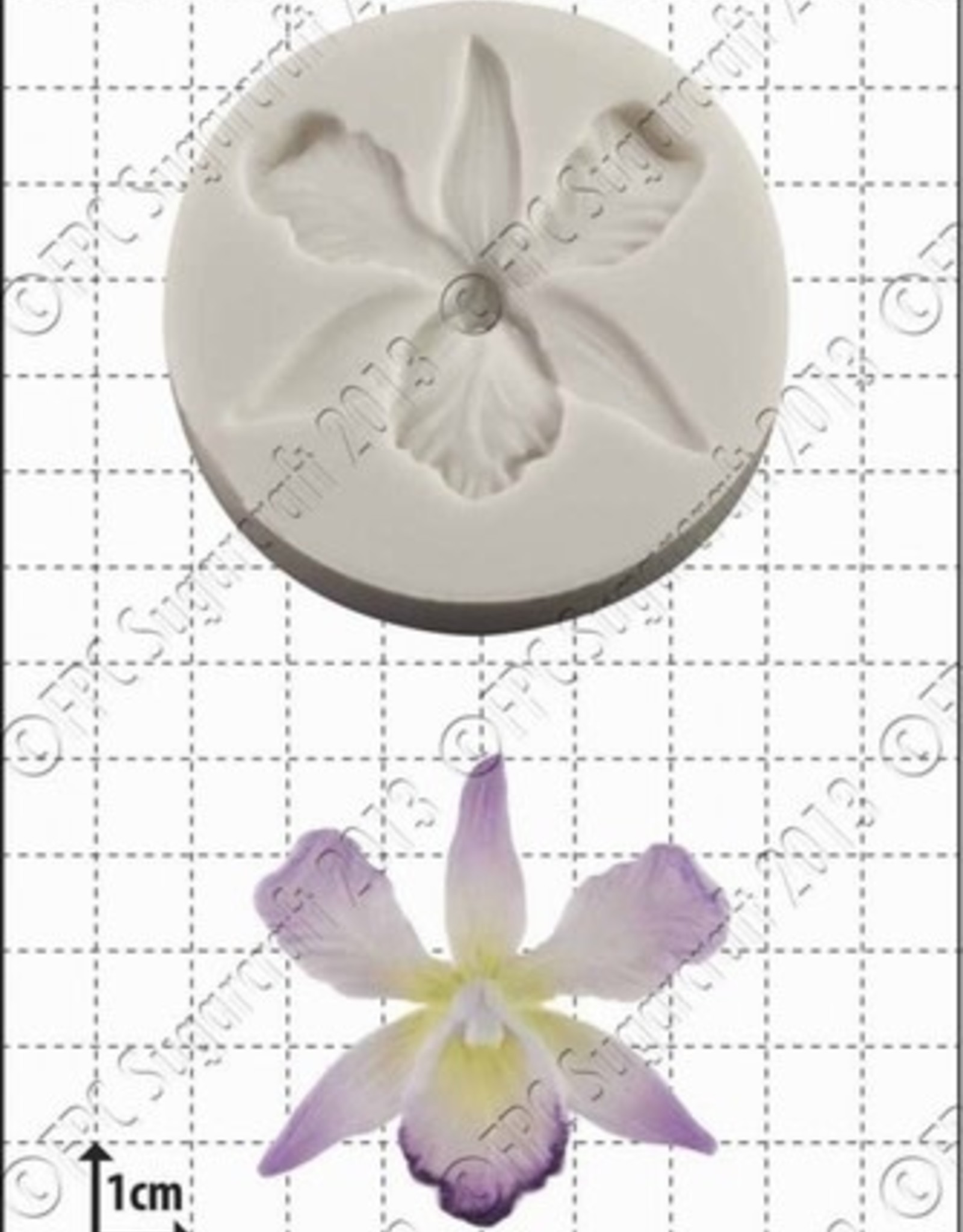 FPC FPC Orchid/Orchidee