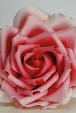 FMM FMM Large Rose Petal Cutter Set/3