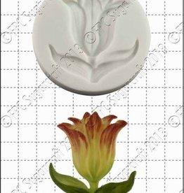 FPC Botanische Tulp