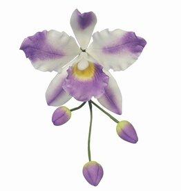 PME Cattleya Orchid flower/Petal cutter set/3