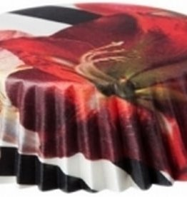 Kalasform Taartvormpje Amaryllis polybag