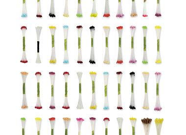 Meeldraden en Flower Pics