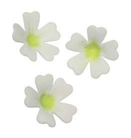 PME PME Primrose Flower/Petal cutter set/3