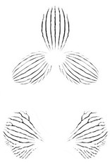 JEM JEM Orchid Stripes- Stencil Set of 3