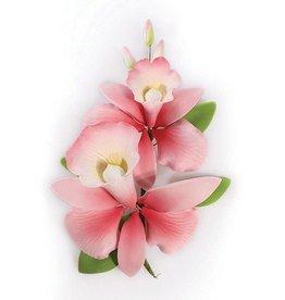 Culpitt Suikerbloem Orchidee Roze 15cm