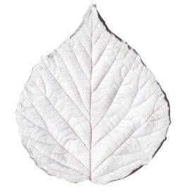 Squires Kitchen SK Great Impressions Leaf Veiner Blackberry