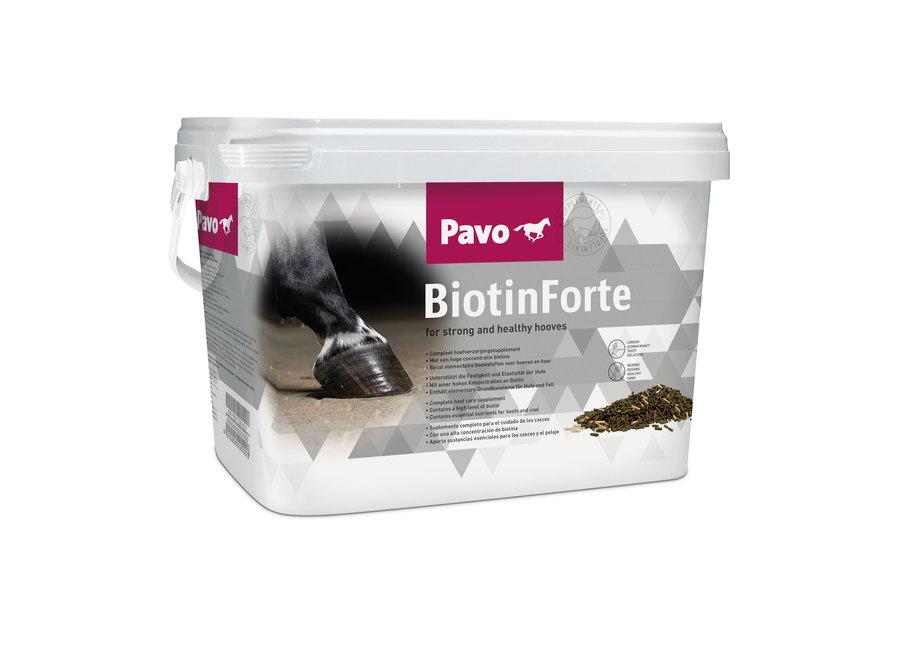 BiotinForte 3kg
