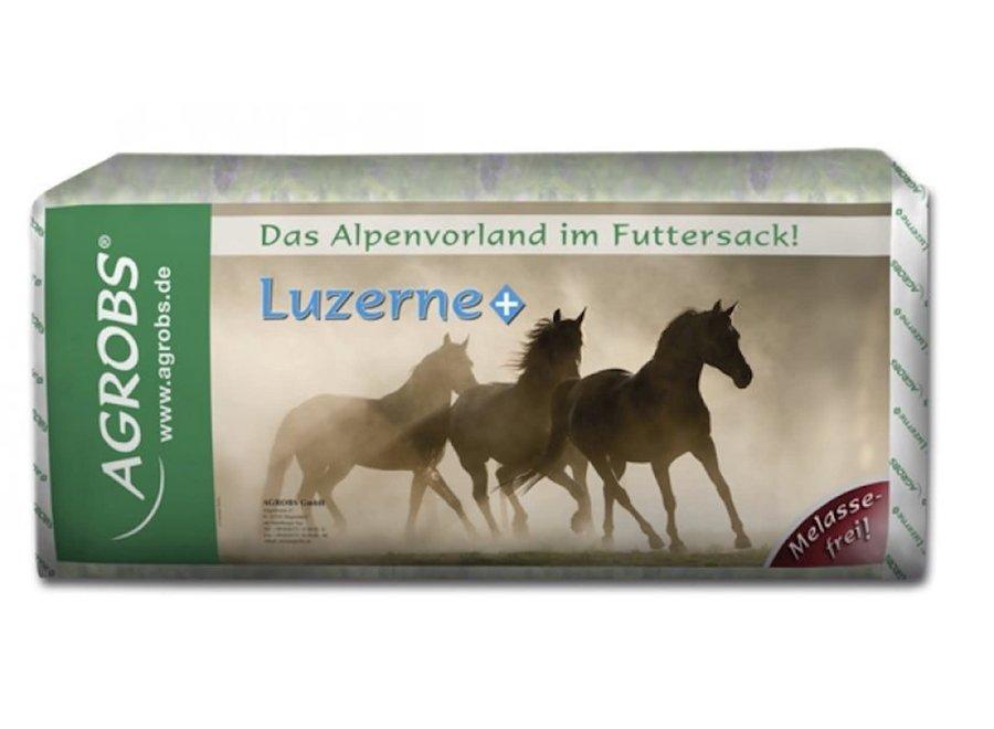 Luzerne+ 15kg