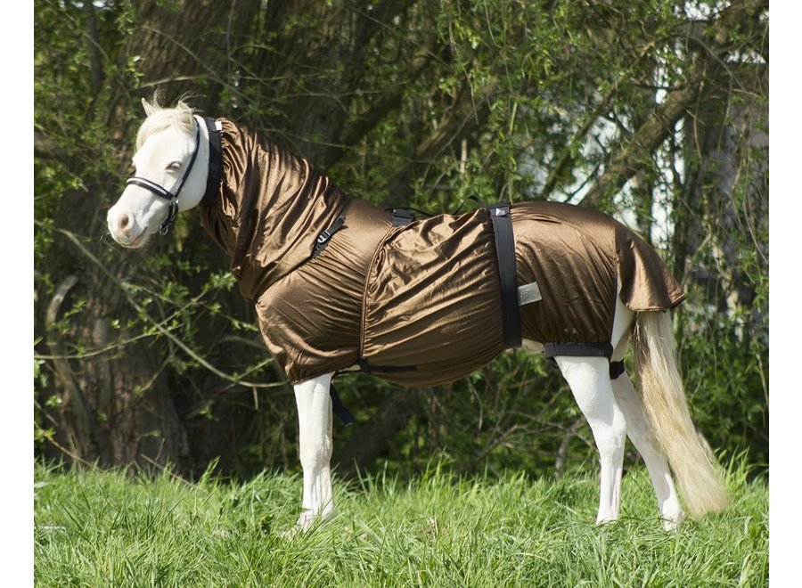 Eczeemdeken Pony