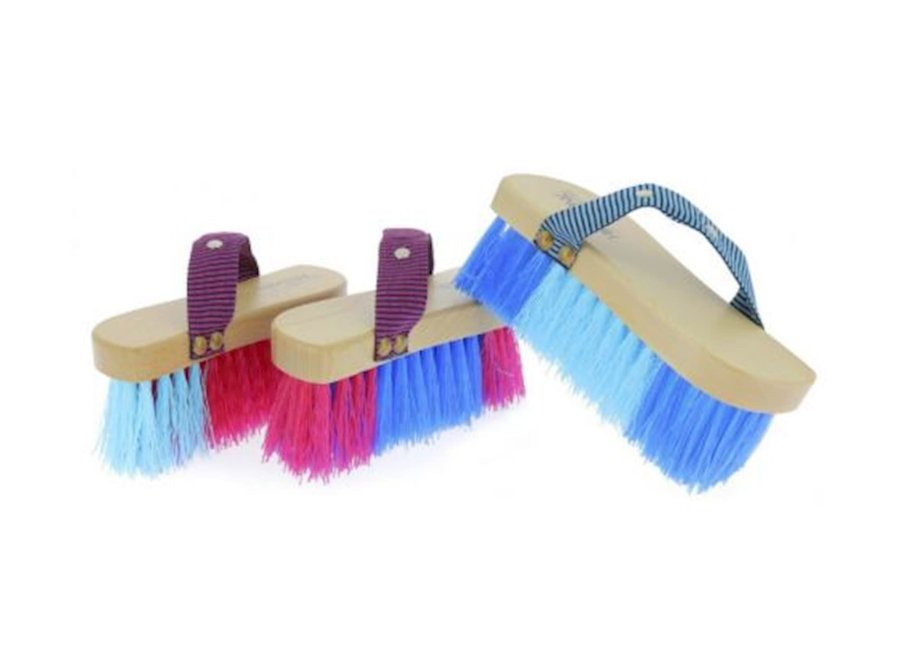 Magnet Brush bicolor harde borstel blauw/roze